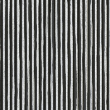 Black Stripes