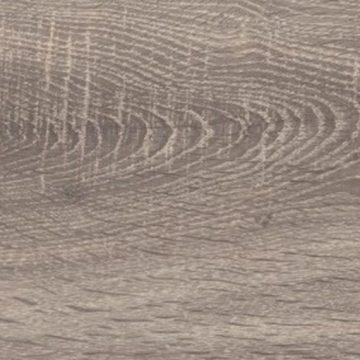 Pyrenean Oak