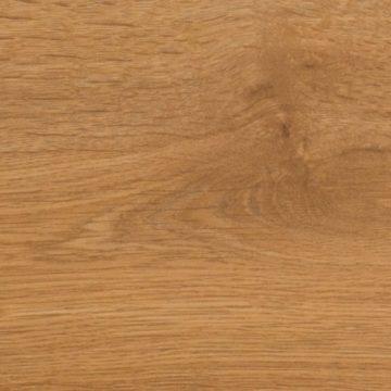 529 Cordoba Oak