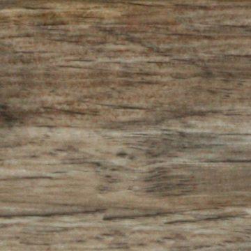610 Dąb Żołędny